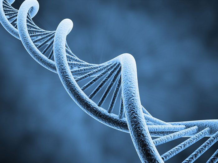 3-Basic-Concepts-in-Genetic-Engineering-DNA-double-helix-structure-(1)